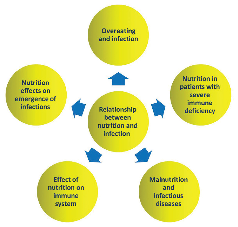 The relationship between nutrition and infectious diseases
